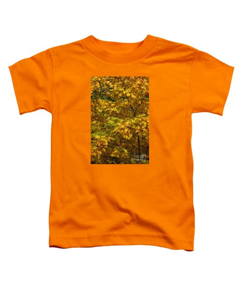 Autumnal Leaves And Trees 2 Toddler T-Shirt