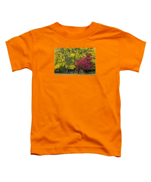 Autumn's Peak Toddler T-Shirt by Jeremy Lavender Photography