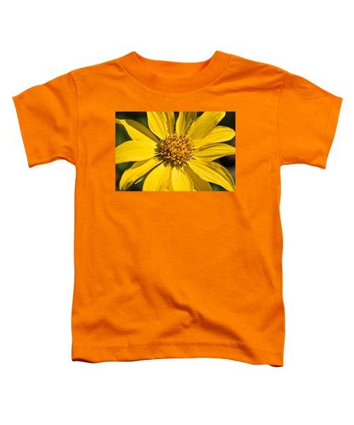 Balsamroot 2 Toddler T-Shirt