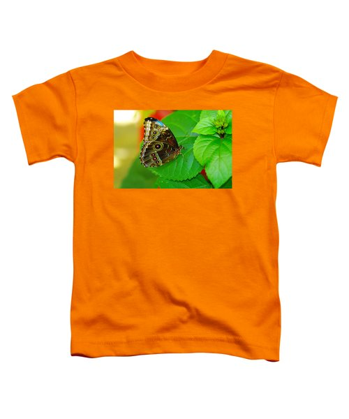 Beautiful Butterfly Toddler T-Shirt