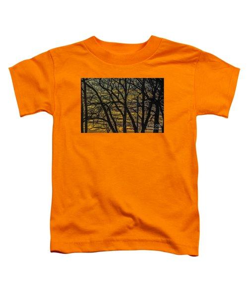 Beautiful Sunset Behind Bare Trees Toddler T-Shirt