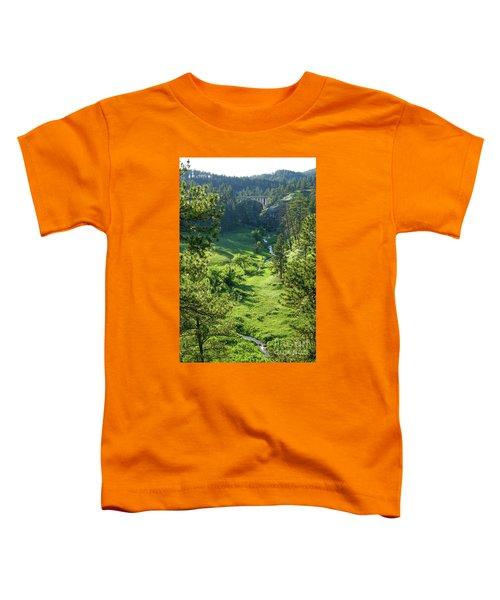 Beaver Creek In The Spring Toddler T-Shirt