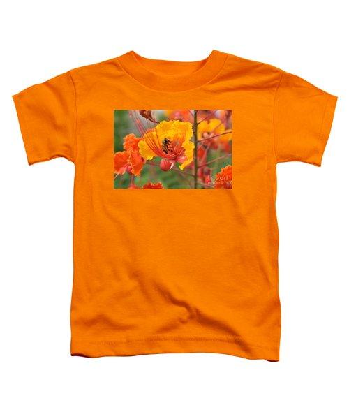 Bee Pollinating Bird Of Paradise Toddler T-Shirt