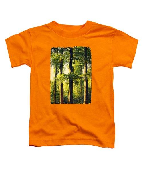 Beech Tree Forest In Evening Light Toddler T-Shirt