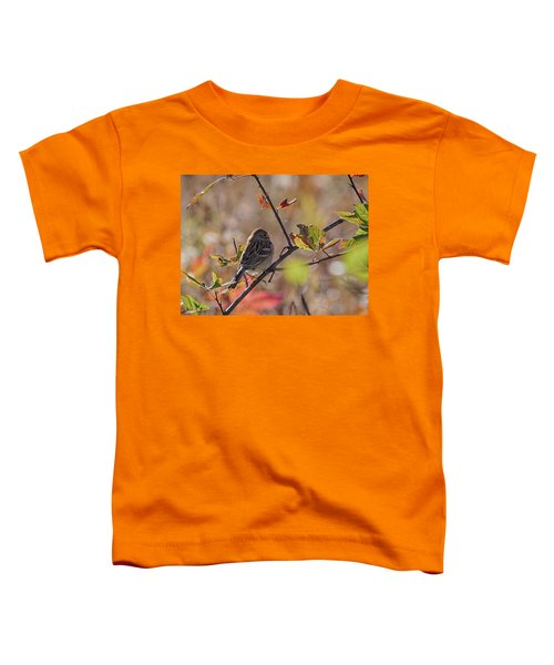 Bird In  Tree Toddler T-Shirt