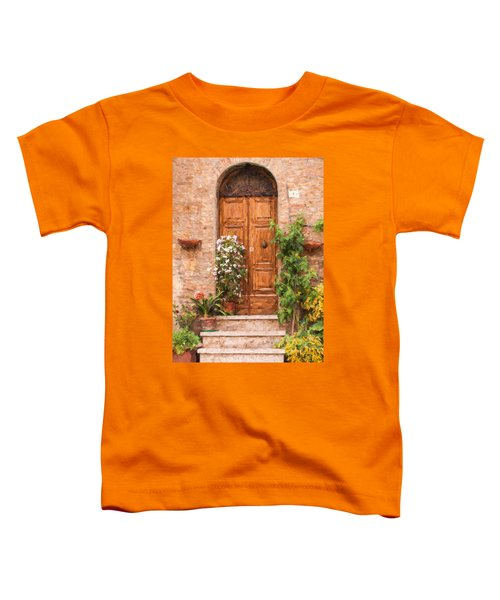Brown Door Of Tuscany Toddler T-Shirt