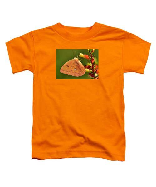 Butterfly Delight Toddler T-Shirt
