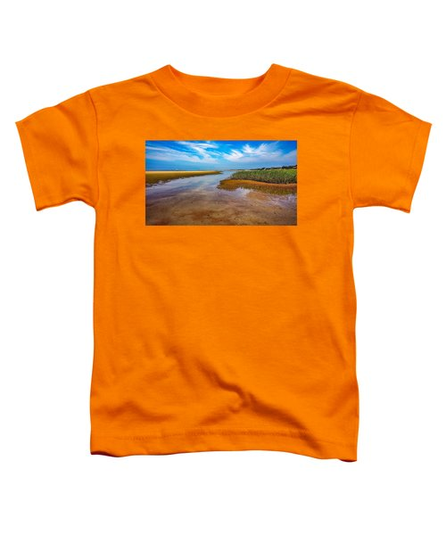 Cape Perspective Toddler T-Shirt