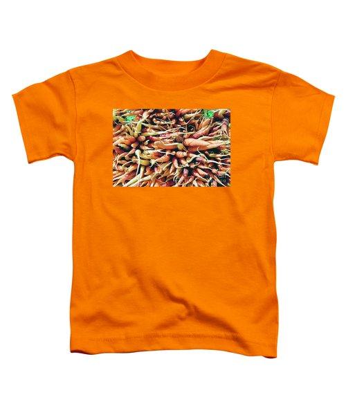 Carrots Toddler T-Shirt by Ian MacDonald