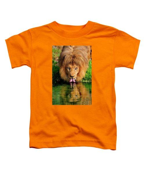 Christmas Lion Toddler T-Shirt