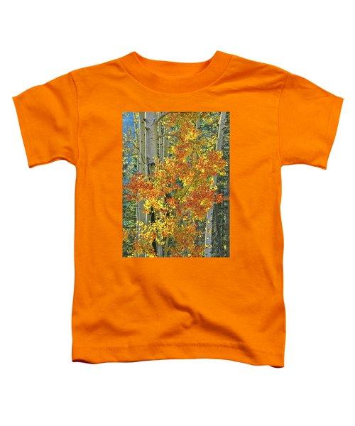 Colorful Aspen Along Million Dollar Highway Toddler T-Shirt