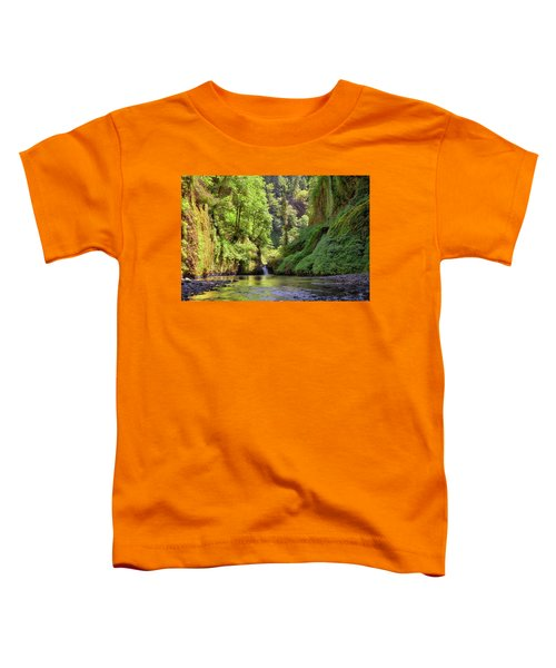 Columbia Gorge Waterfall In Summer Toddler T-Shirt