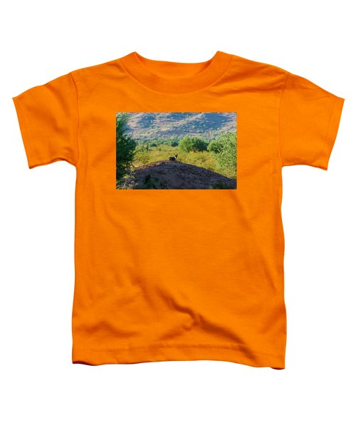 Coyote Hill Toddler T-Shirt