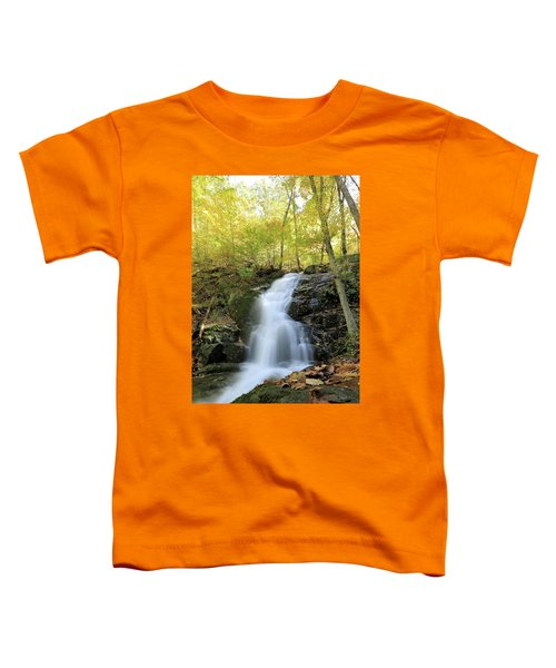 Crabtree Falls In The Fall Toddler T-Shirt