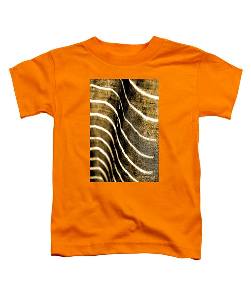 Curves And Folds Toddler T-Shirt