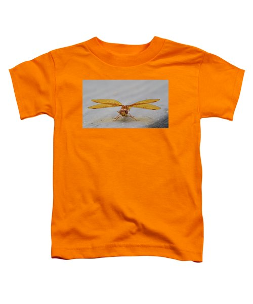 Dragon Fly Hanging Around Toddler T-Shirt
