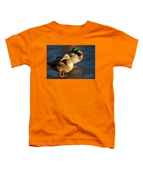 Duck Pair Sunbathing On Frozen Lake Toddler T-Shirt