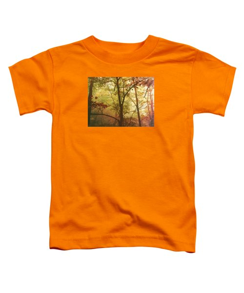 Early Morning Mist Toddler T-Shirt by Bellesouth Studio