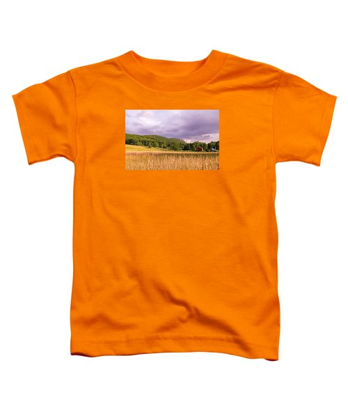 East Street View Toddler T-Shirt