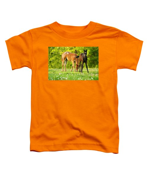 Easy Pickins Toddler T-Shirt
