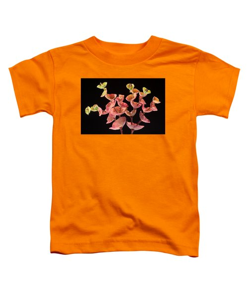 Euphorbia Toddler T-Shirt