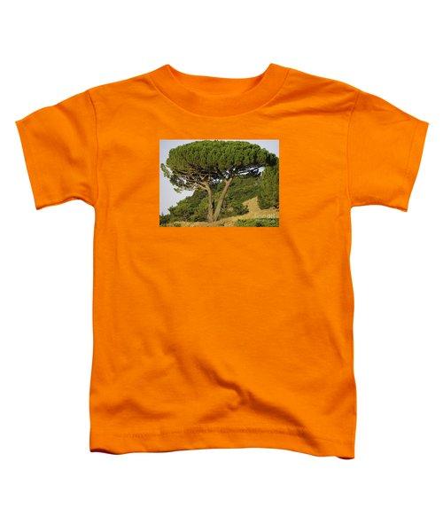 Fairfax Beauty Toddler T-Shirt