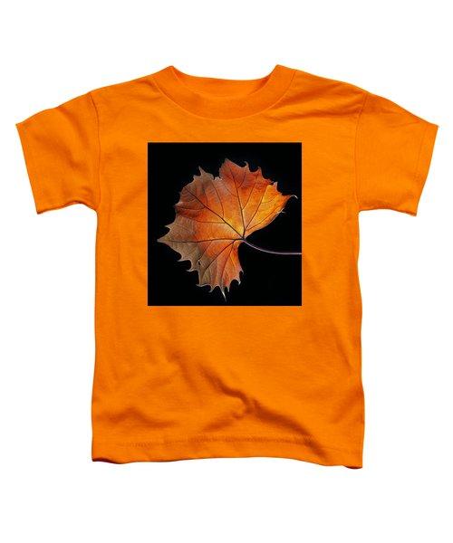 Fall Toddler T-Shirt