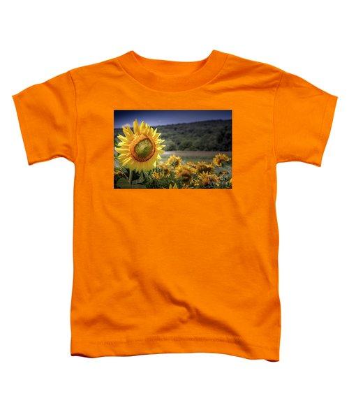 Field Of Sunflowers Toddler T-Shirt
