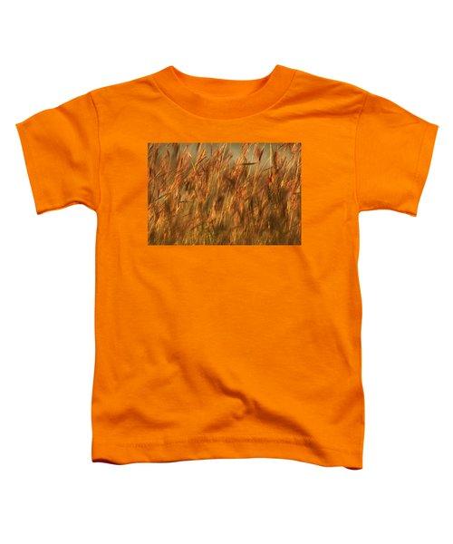 Fields Of Golden Grains Toddler T-Shirt
