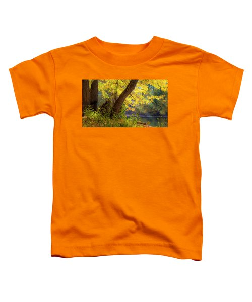 Filtered Light 2 Toddler T-Shirt