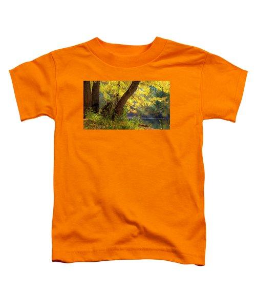 Filtered Light 2 Toddler T-Shirt