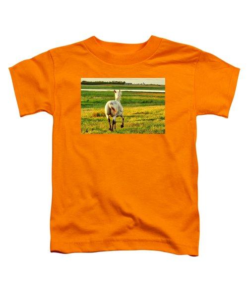 Follow My Lead Toddler T-Shirt