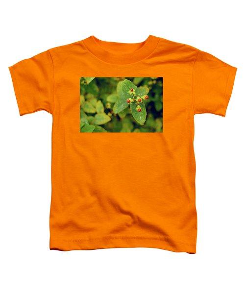 Fall Berry Toddler T-Shirt