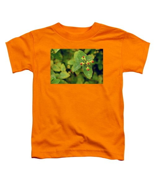 Fall Berry Toddler T-Shirt