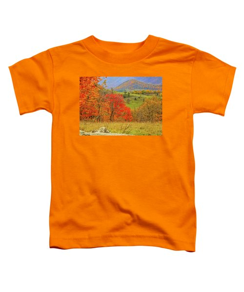 Germany Valley Dressed In Autumn Toddler T-Shirt