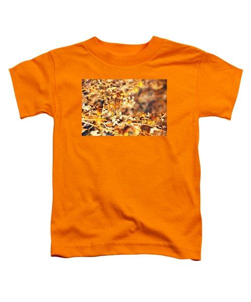 Gold Rush Toddler T-Shirt