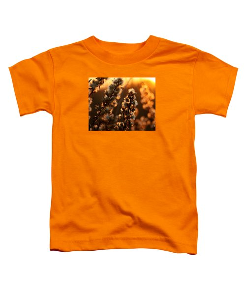 Goldenrod At Sunset Toddler T-Shirt