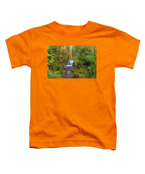 Hidden Falls In Autumn Toddler T-Shirt