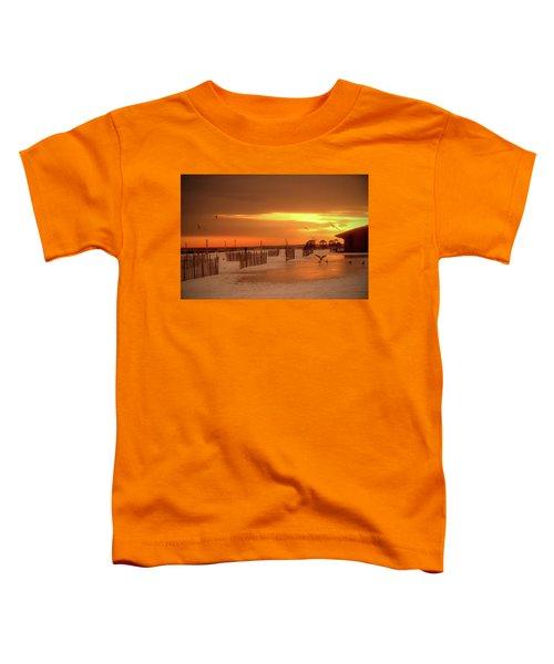 Iced Sunset Toddler T-Shirt