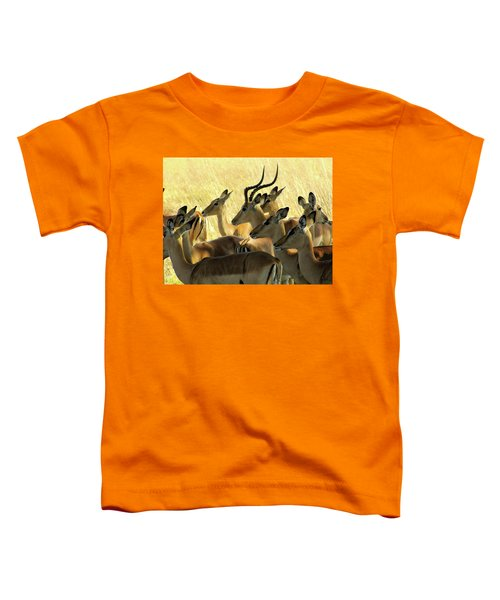 Impalas In The Plains Toddler T-Shirt