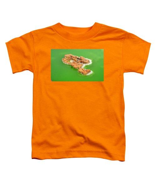 Dallol #4 Toddler T-Shirt by Aidan Moran