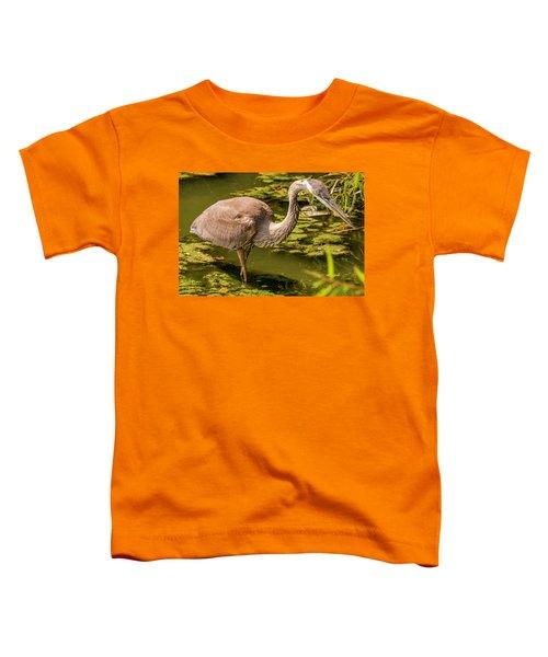 Juvenile Great Blue Heron Toddler T-Shirt
