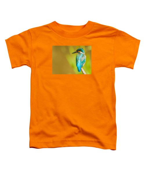 Kingfisher Toddler T-Shirt by Paul Neville