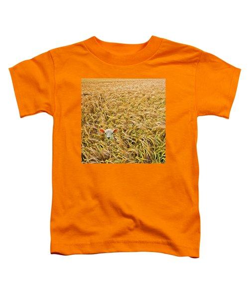 Lamb With Barley Toddler T-Shirt