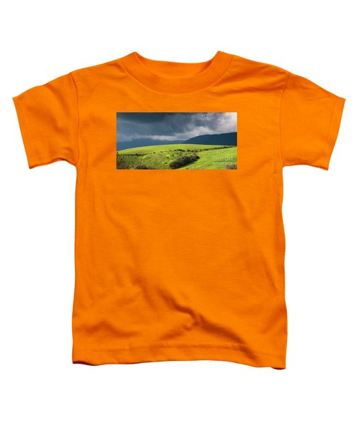 Landscape Aspromonte Toddler T-Shirt