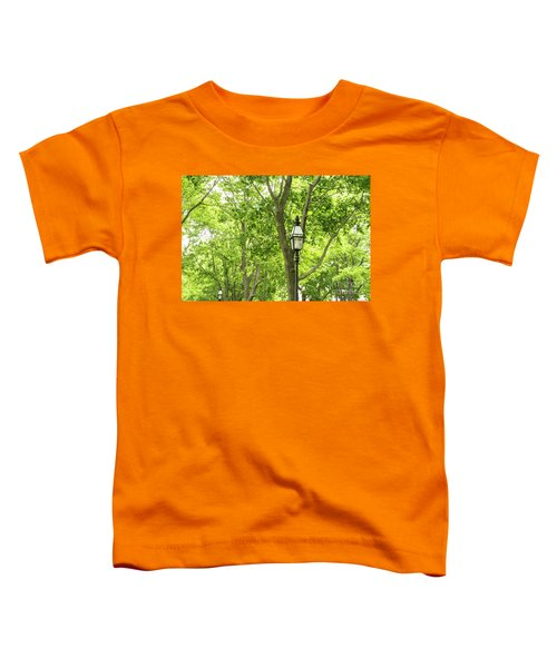 Lanterns Among The Trees Toddler T-Shirt