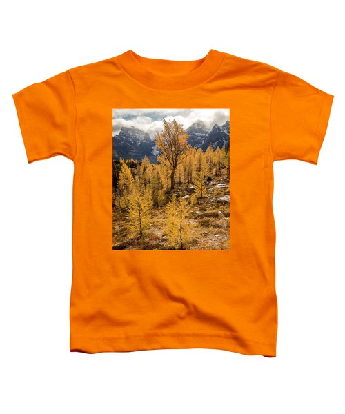 Larch Family Toddler T-Shirt