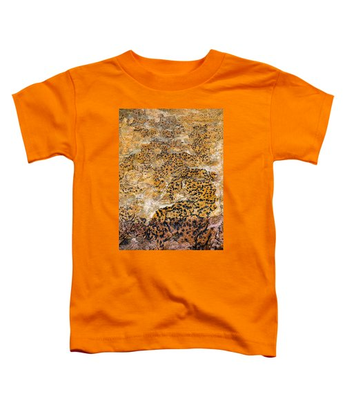 Toddler T-Shirt featuring the photograph Lichen Abstract, Bhimbetka, 2016 by Hitendra SINKAR