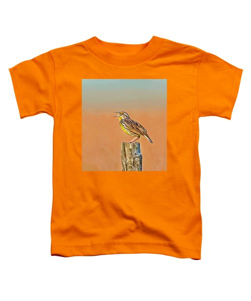 Little Songbird Toddler T-Shirt