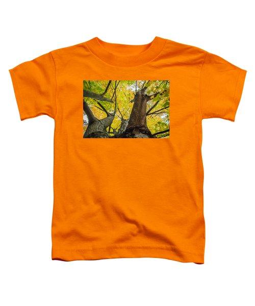Looking Up - 9682 Toddler T-Shirt